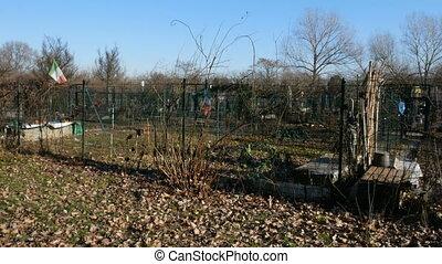 Small urban garden in winter