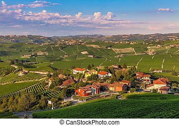 Small village among green vineyards.