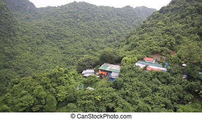 Small Village in the forest