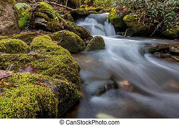 Small Water Fall in Mingus Creek