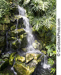 Small waterfall in green foliage