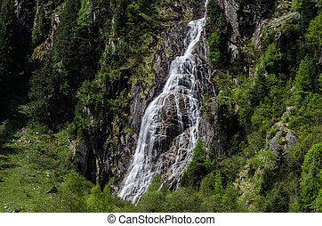 small waterfall in green nature