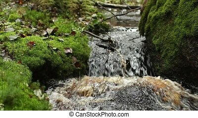 waterfall in green rainforest - small waterfall in green...