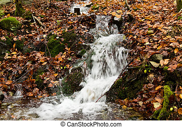 Small waterfall in little stream