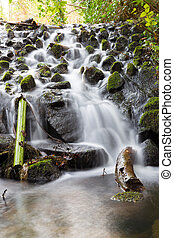 Small waterfall in Marlay Park
