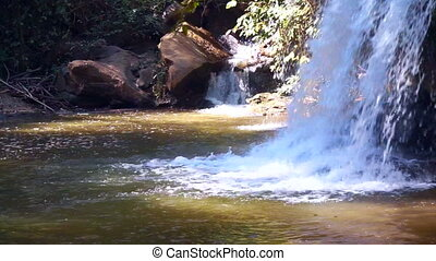 Small waterfall in tropical forest