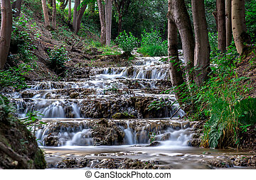 Small waterfall on forest river