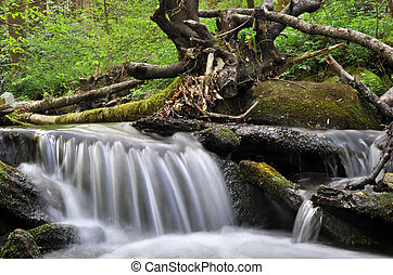 Small waterfall on peaceful spring