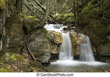 Small Waterfall - A beautiful Waterfall surrounds by a...