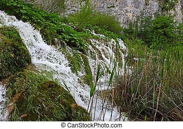Small waterfall overgrown plants