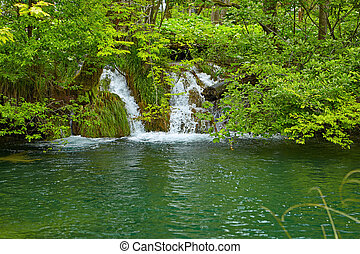 Small waterfall overgrown plants in the forest