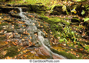 Small Waterfall with Fall Colors