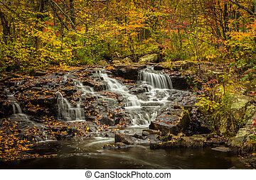 Small waterfalls in the fall 2