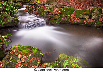 Small Waterfalls in Woodland