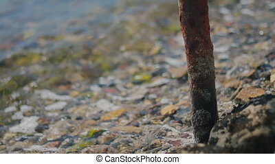 Small waves lapping and receding on rocky beach rusty pipe