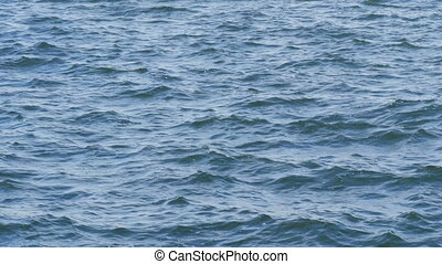Small waves on the freshwater reservoir of the Dnieper River. Water surface close-up view