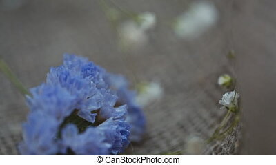 small white flowers on canvas