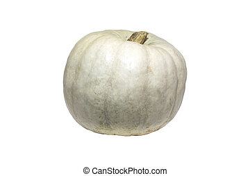 Small white pumpkin.