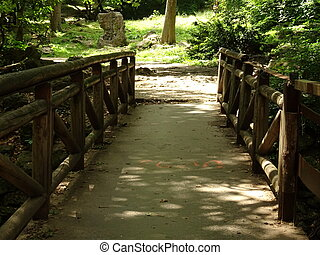 Small Wooden Bridge in a Forest