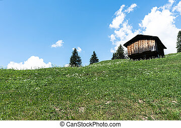 small wooden cottage in a mountain landscape