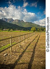 Small wooden fence in field