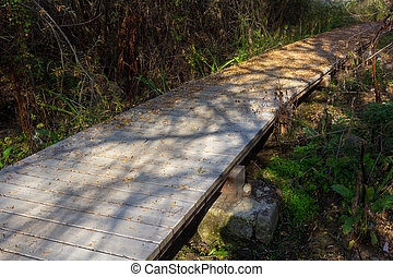 small wooden footbridge in a forest