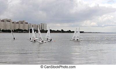 Small Yacht Regatta