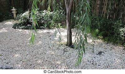 Small zen garden with stone lantern, stock footage