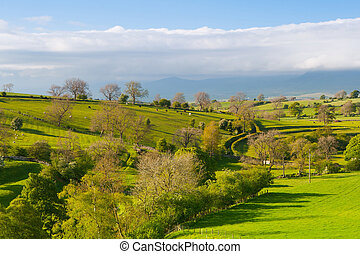 smardale, 偉人, えら, 牧草地, 英国