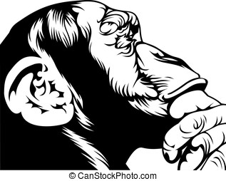 smart monkey - black and white smart monkey on the white...