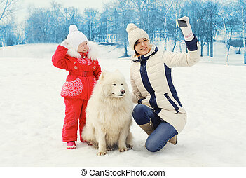 smartphone, hiver, samoyed, selfie, enfant, chien, mère, portrait, blanc, marques, jour