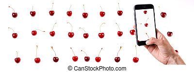 Smartphone in hand. Produces photos of sweet cherry berries on a white background. Juicy summer berries closeup. Isolated. Banner.