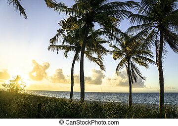 Smathers Beach in Key West Florida