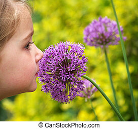 young girl smelling a purple allium (alliaceae) flower