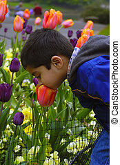 An young Indian kid smelling the summer flowers