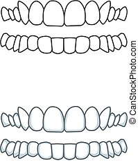 Smile, teeth illustration for dentist. Vector tooth