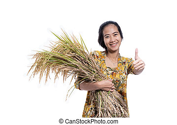 asian farmer female showing thumb up with paddy rice grain on hand