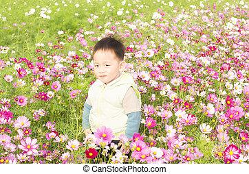 Smiling boy in meadow