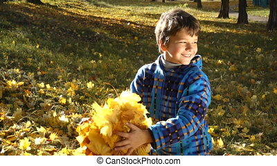 Smiling boy throwing autumn leaves on sunny park
