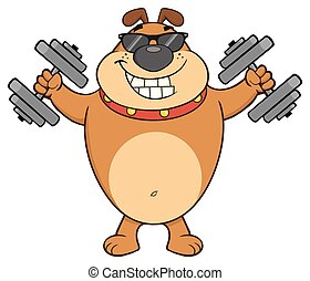 Smiling Brown Bulldog Cartoon Mascot Character With Sunglasses Working out with Dumbbells
