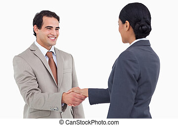 Smiling businessman shaking hand of businesspartner