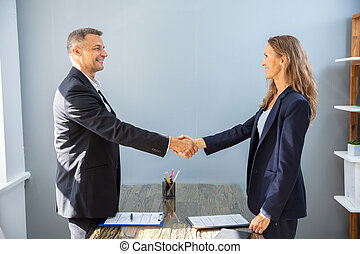 Smiling Businessman Shaking Hands With His Colleague