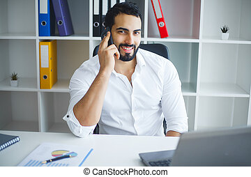 Smiling businessman using laptop at desk in office