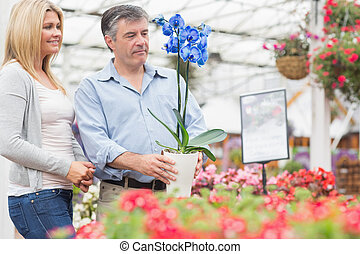 Smiling couple choosing a plant