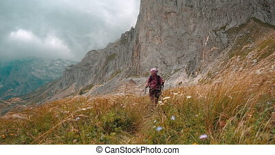 Smiling female tourist walking with trekking poles among tall yellow grass under large mountain Fisht in Caucasus, Adygea, Russia. Active woman travels in mountains on hike. Concept of tourism hiking