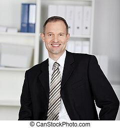 Smiling Handsome businessman - Handsome businessman in suit...