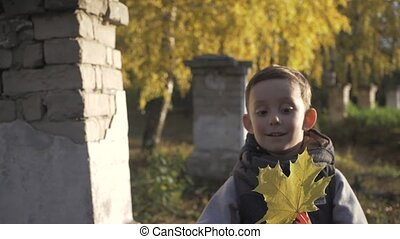 Smiling little baby boy playing in the park. Autumn. yellow maple leaves