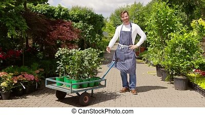 Smiling man with flowerpots on cart - Cheerful man wearing...