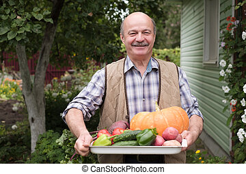Smiling mature man with picked vegetables in his garden.