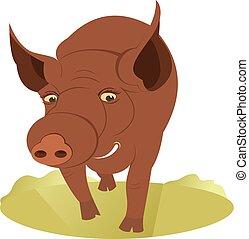Smiling pig illustration